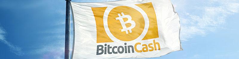 Bitcoin Cash (BCH) trading